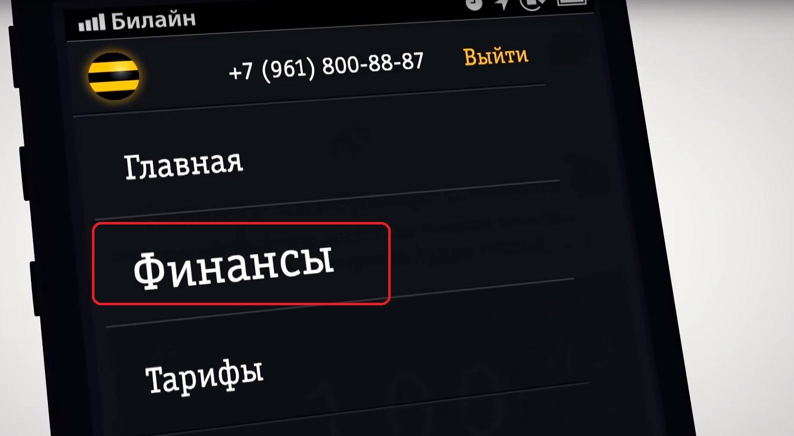 детализация звонков через приложение мой Билайн