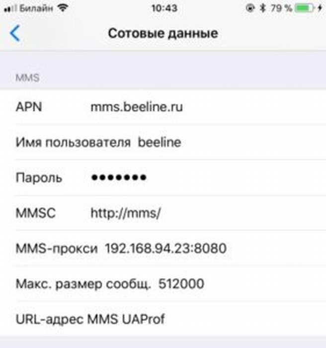 iPhone X(s/r)/8/7/6 не отправляет ММС или не принимает