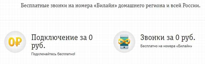 Услуга для роуминга по России Мой Билайн